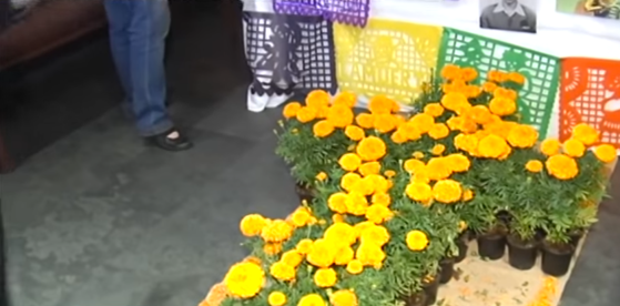 Día de los Muertos de México en Sevilla